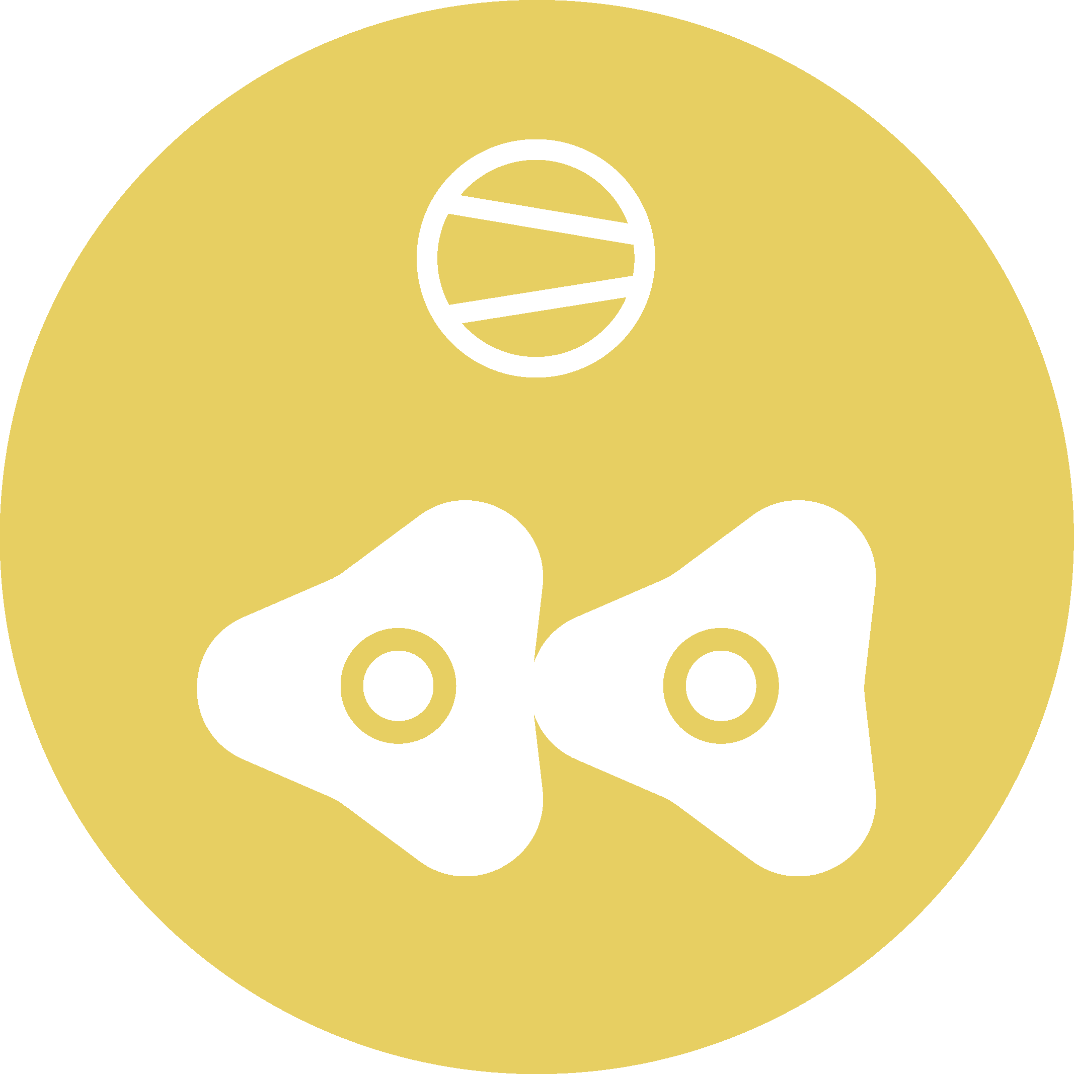 Rotary Lobe
