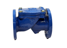 ISV Swing Check Valves